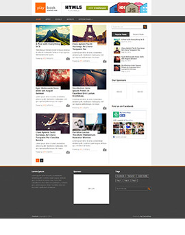 PlayBook-270x343 wordpress themes free