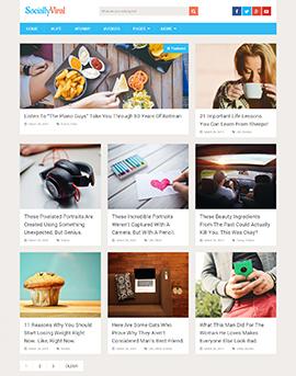 SociallyViral Free-270x343 wordpress themes free