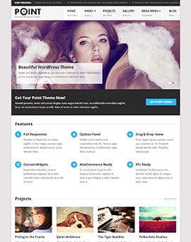 wordpress template blog