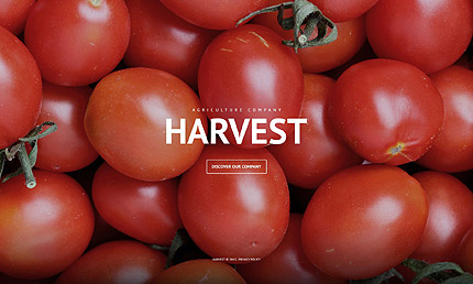 Agriculture WordPress Template