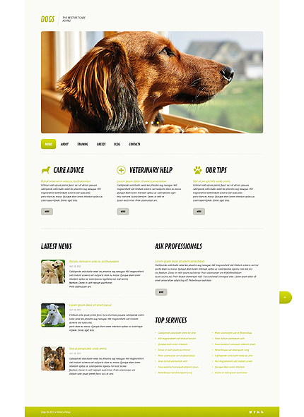 Dog Responsive WordPress Theme honden website template