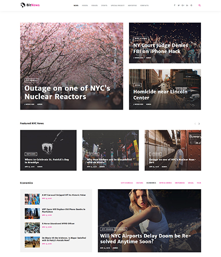 Magazine WordPress Theme wordpress website template