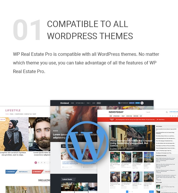 Compatible With All WordPress Themes vastgoed